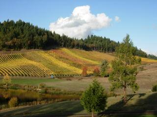 Oregon Wine 60001
