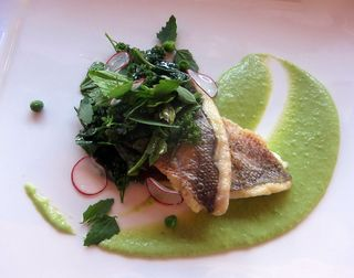 Fish and puree