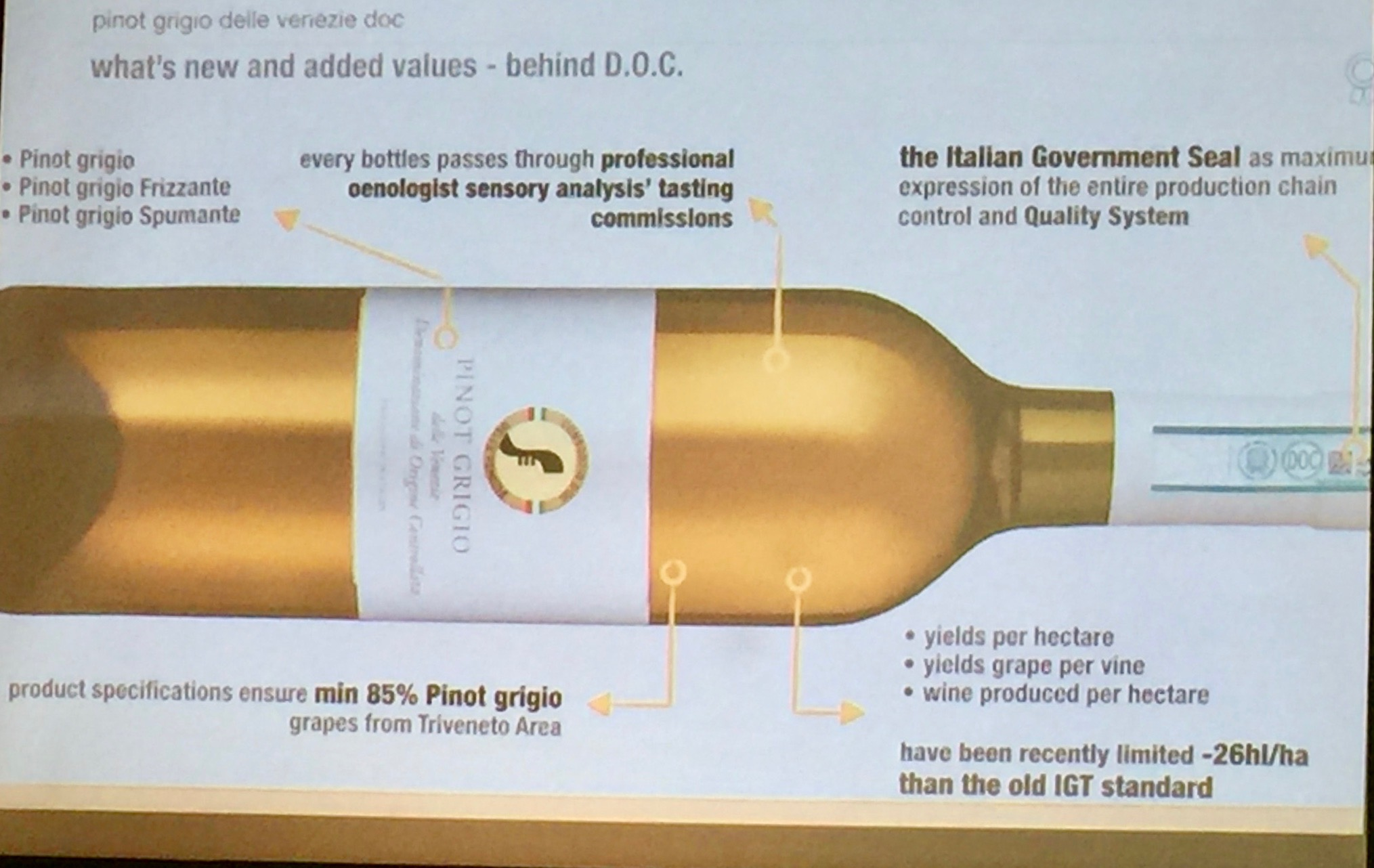A Guide To Italy S Pinot Grigio Tableconversation Com